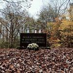 Cmentarz żołnierzy poległych podczas I wojny światowej w Borowej udekorowany chryzantemami
