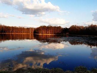 Piękny krajobraz - staw w Wygodzie; w tle las, chmury odbijają się w błękitnej wodzie