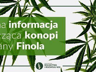 plakat - na zielony prostokącie biały napis - ważna informcja dotycząca konopi odmiany Finola; obok na białym tle liście konopi