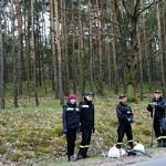 Strażacy zbierający śmieci w lesie