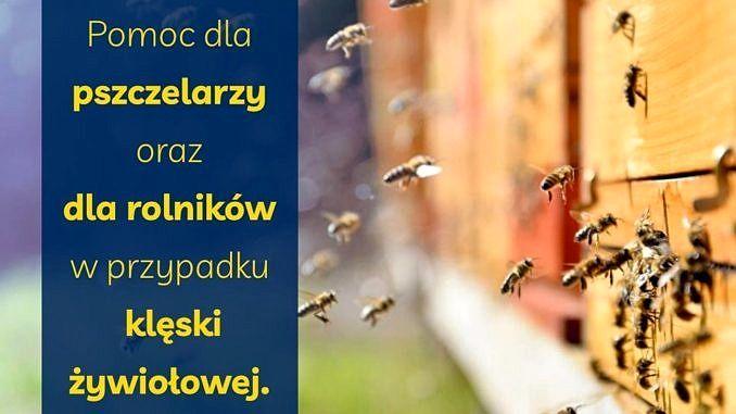 na tle pszczół zlatujących do ula na niebieskim tle informacja: pomoc dla pszczelarzy oraz rolników w przypadku klęski żywiołowej.