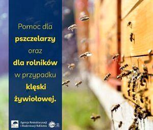 na tle pszczół zlatujących do ula na niebieskim tle informacja: pomoc dla pszczelarzy oraz rolników w przypadku klęski żywiołowej; na dole logo ARiMR