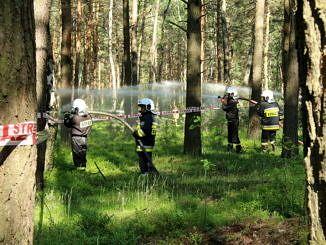 Strażacy podają wodę na teren pożaru