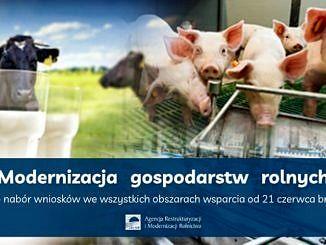 Plakat z krowami, prosiakami i szklankami mleka; napis na niebieskim tle:modernizacja gospodarstw rolnych