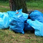 Niebieskie worki ze śmieciami pod drzewem