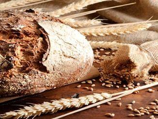 chleb i kłosy