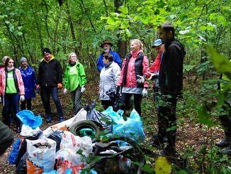 Ludzie z workami sprzątają w lesie