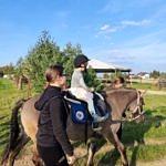 Dzieci podczas przejażdżki na koniu